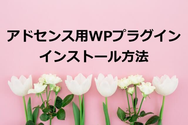 アドセンス用WPプラグインインストール方法